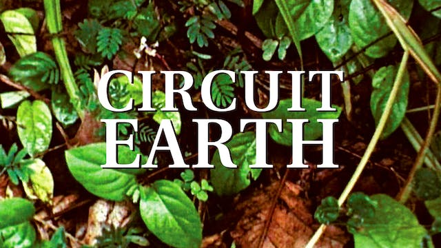 Circuit Earth