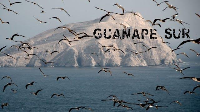 Guanape Sur