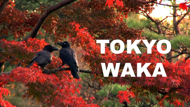 Tokyo Waka