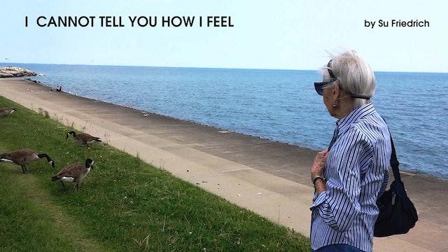 I Cannot Tell You How I Feel