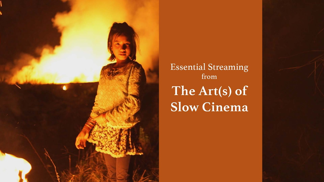 The Art(s) of Slow Cinema
