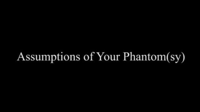 ASSUMPTIONS OF YOUR PHANTOM(SY)