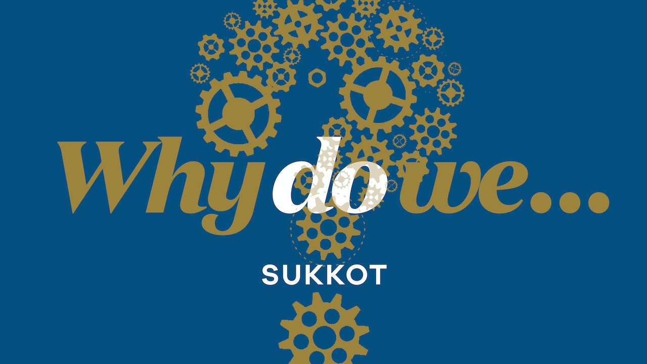 Sukkot Questions, Answered!