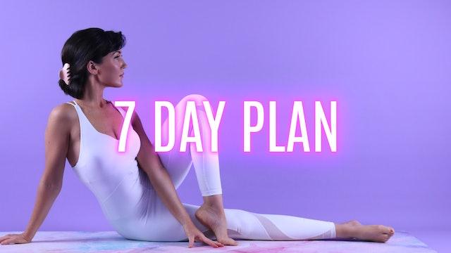 7 Day Plan