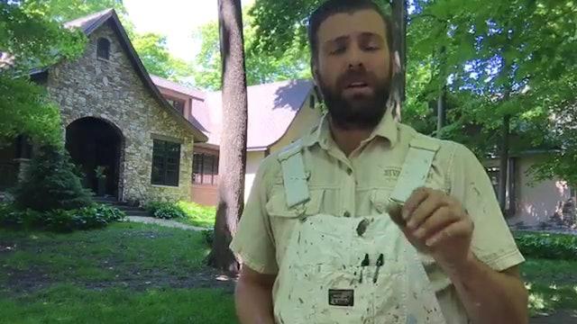 Wood Restoration and Brush Organization
