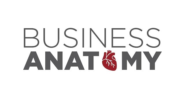 Business Anatomy