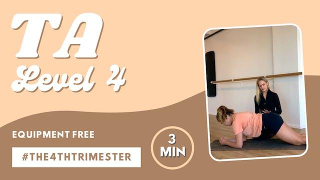 TA Level 4