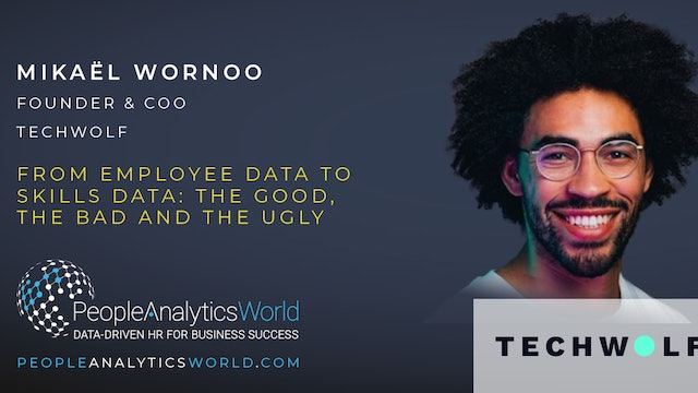 From Employee Data to Skills Data: The Good, The Bad and the Ugly