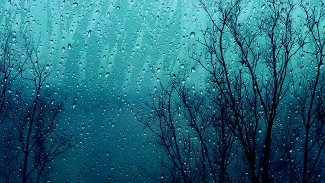 BounceBurn ~ Rainy Day