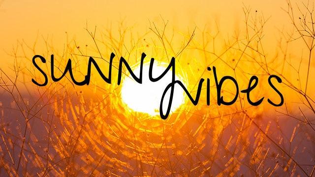 BounceBurn ~ Sunny Vibes!