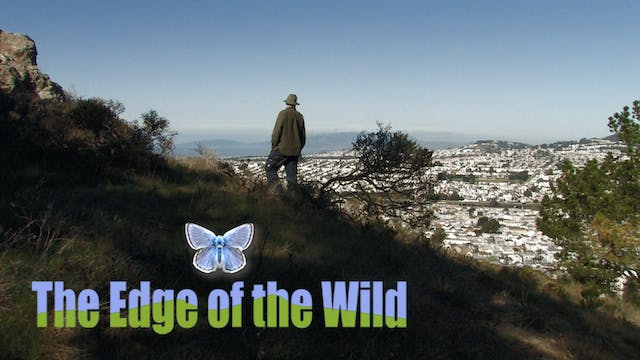 The Edge of the Wild