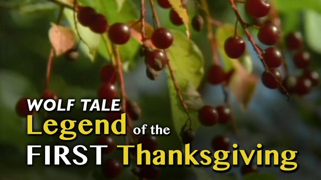 WOLF TALES: Legend of the First Thanksgiving
