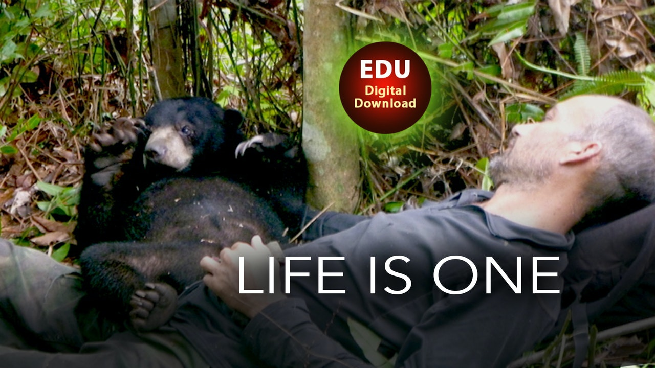 Life is One - EDU