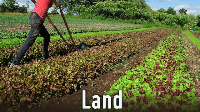 Food, Agriculture, Forestry, Soil, Minerals and Natural Resources
