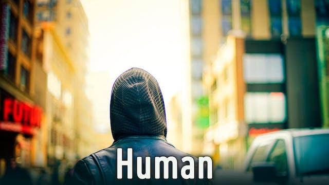Culture, Ecology, Social Relationships, Urbanisation