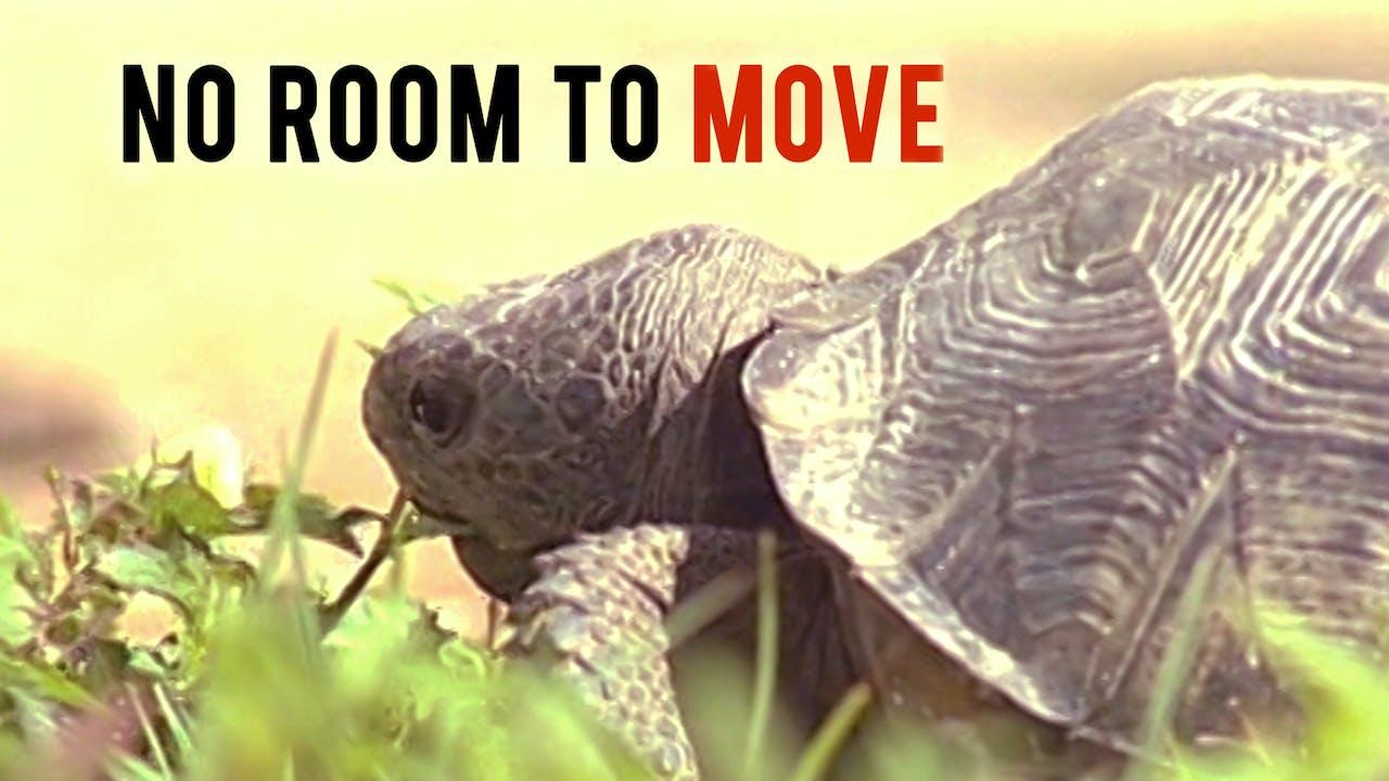 No Room to Move