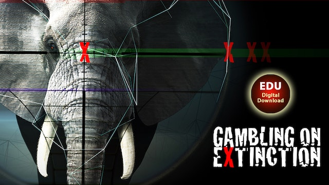 Gambling on Extinction - EDU