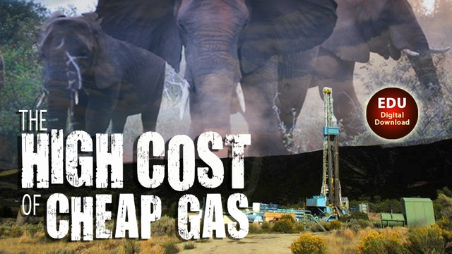 The High Cost of Cheap Gas - EDU