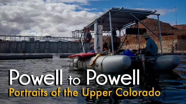 Powell to Powell