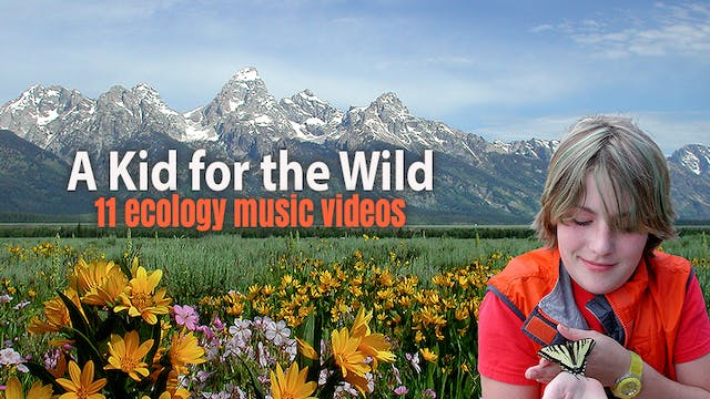 A Kid for the Wild music videos
