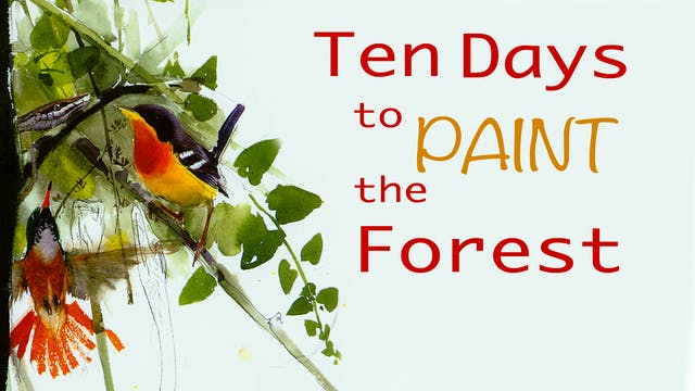 Ten Days to Paint the Forest