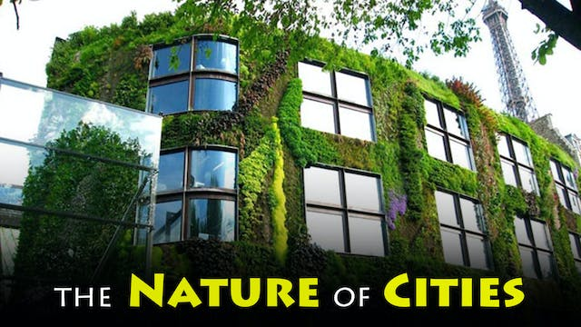 The Nature of Cities