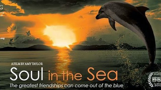 Soul In the Sea