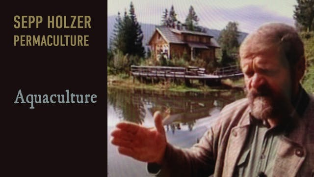 Sepp Holzer Permaculture - Aquaculture preview