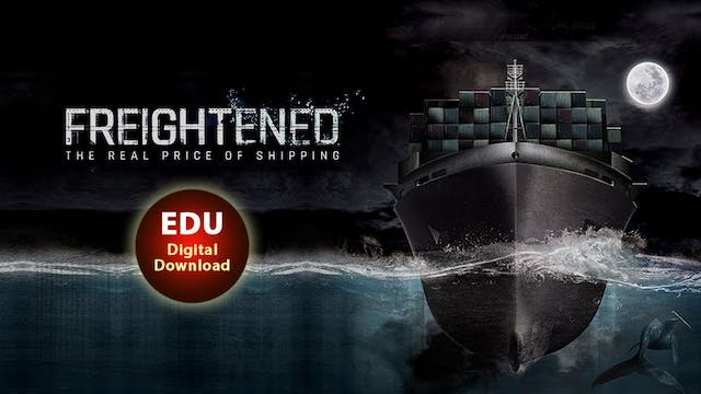 FREIGHTENED The Real Price of Shipping - EDU