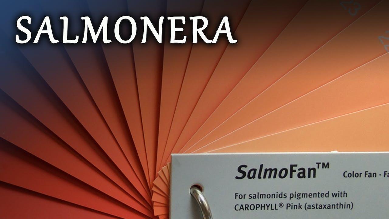 Salmonera