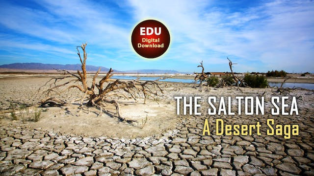 The Salton Sea: A Desert Saga - EDU