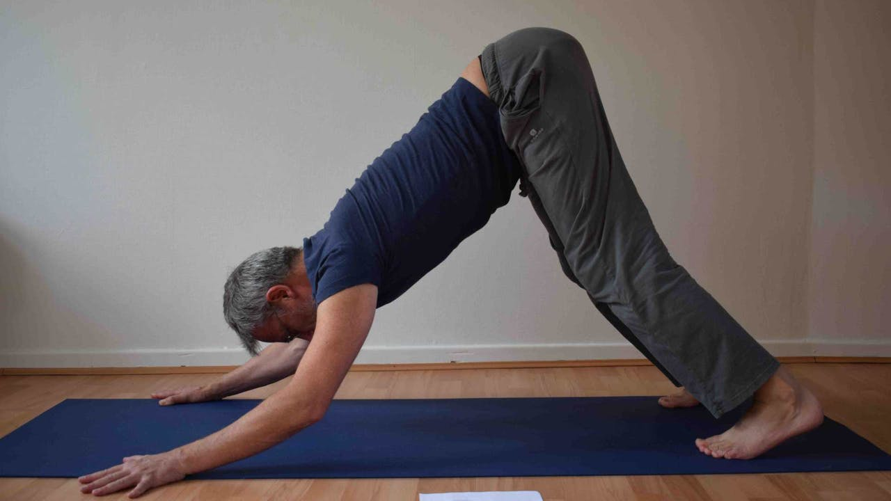PhysioYoga - Basisprincipes