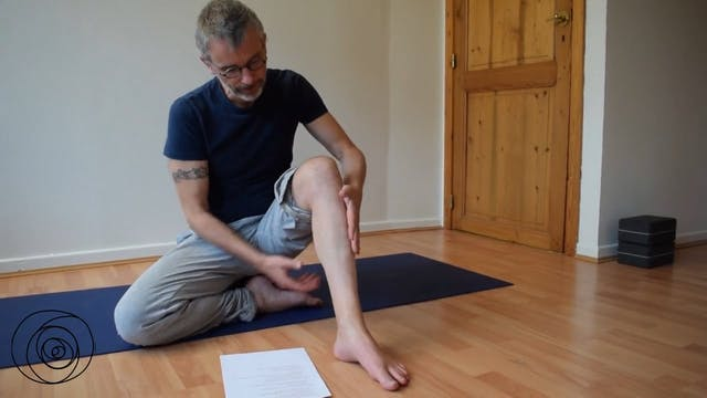 Stretching of the calf muscles