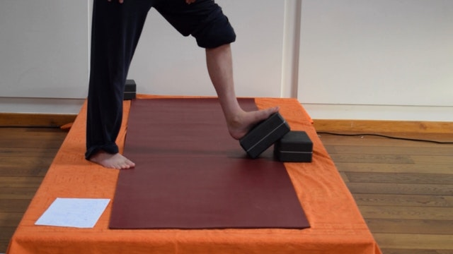 PhysioYoga - flow doorheen de myofasciale lijnen