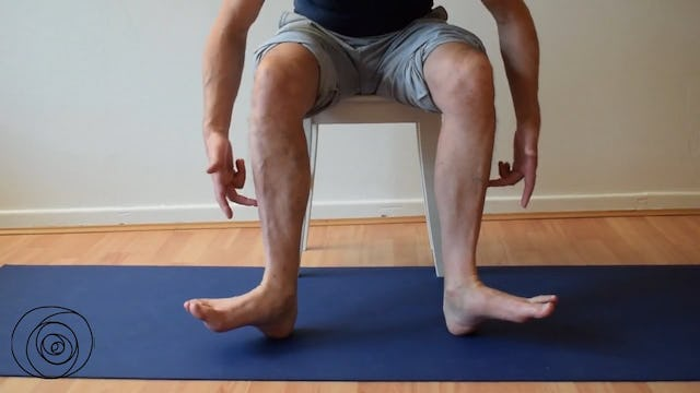 activation outside ankle and lower leg - seated