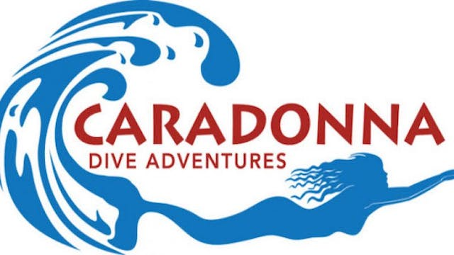 Picture Of His Life for Caradonna Dive Adventures