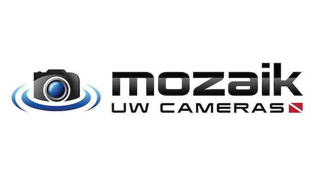 Picture Of His Life for Mozaik