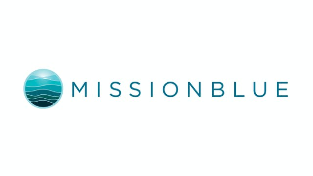 Picture Of His Life for Mission Blue