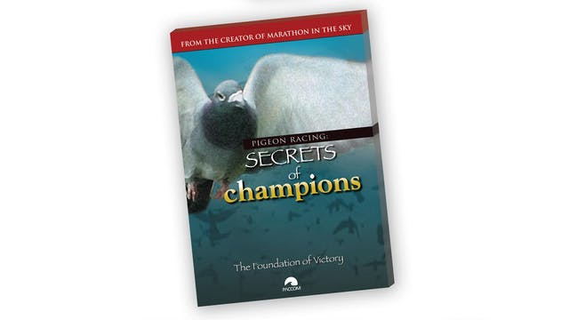 Secrets of Champions I  - The Foundation of Victory