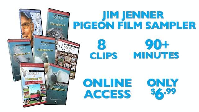 Pigeon Films Sampler