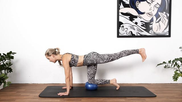 NEW! Pilates with Toys - Ball Advanced