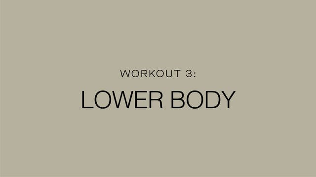 Workout 3: Lower Body