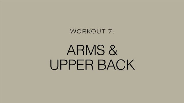 Workout 7: Arms & Upper Back