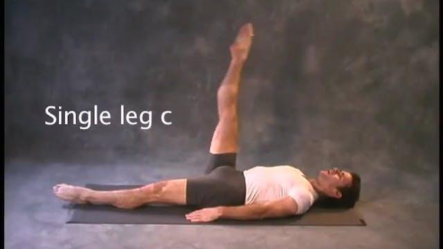 Single Leg Circles
