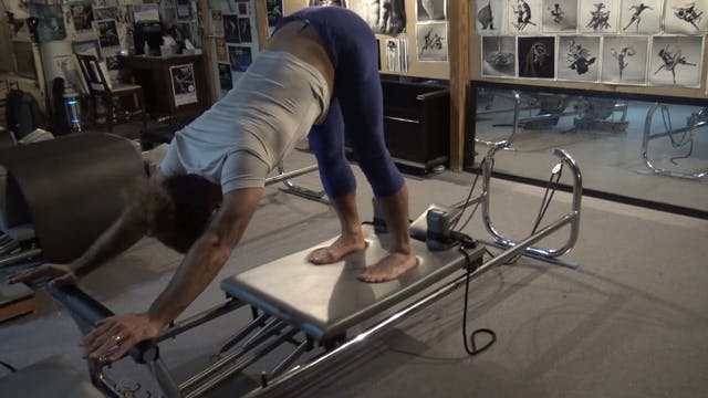 Elephant on the reformer