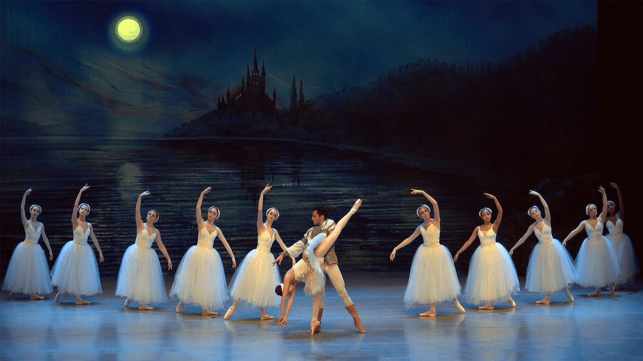 Swan Lake: rent all five shows