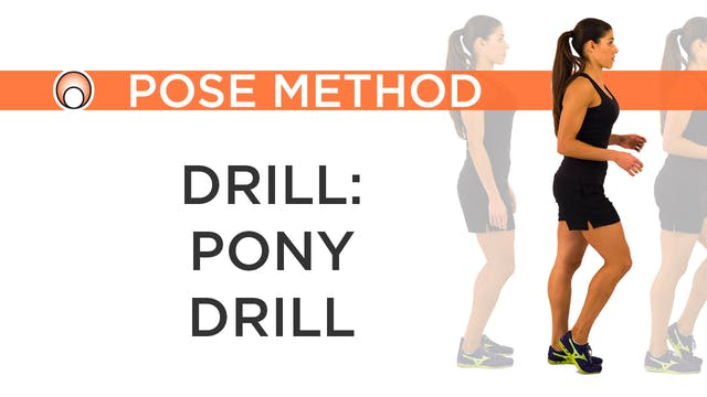 Drill - Pony