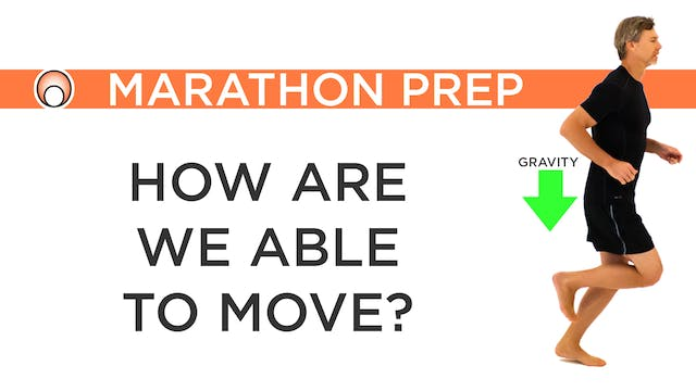 How are we able to Move?
