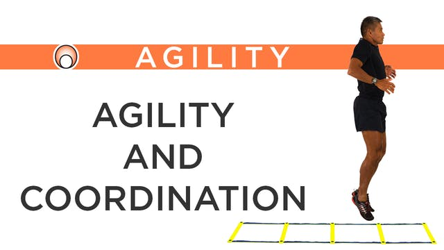 The Relationship Between Agility & Co...