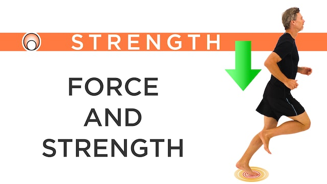 The Relationship Between Force and St...